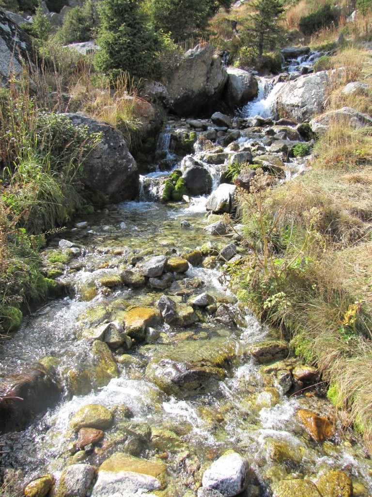 Ручей в большое Алматинское озеро